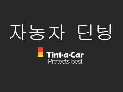 자동차 틴팅